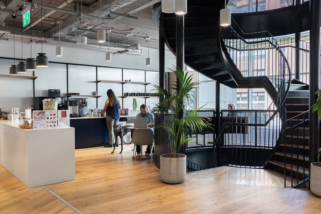 WeWork | Iveagh Court
